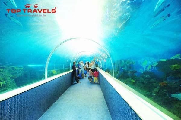 Vinpearl Land Phú Quốc vùng đất thánh của người yêu du lịch