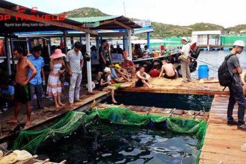 Khám Phá Hòn Miễu - Hòn Một - Làng Chài - Bãi Tranh ở Nha Trang