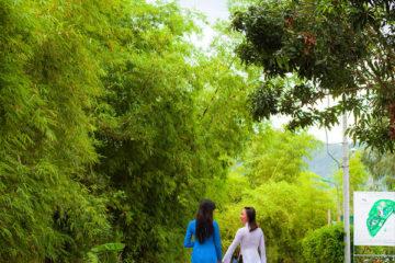 Khu Du Lịch Làng Tre Nha Trang
