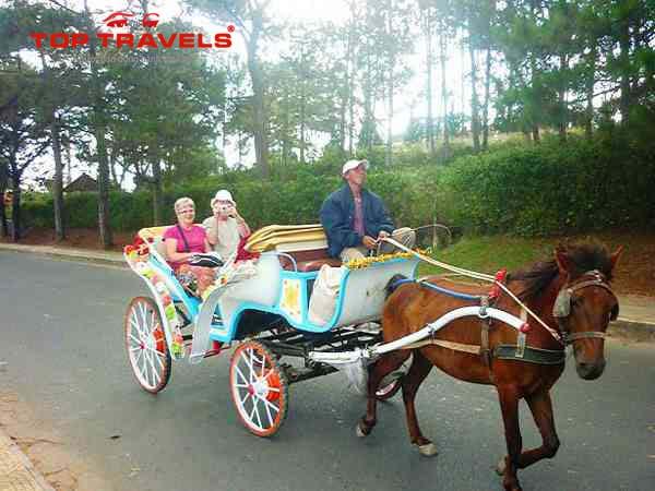 Tour du lịch Hà Nội - Đà Lạt 4 ngày 3 đêm giá rẻ