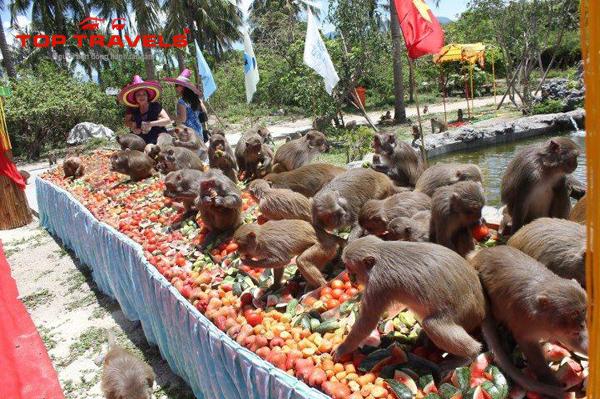 Tour du lịch Nha Trang - đảo Khỉ 3 ngày 3 đêm