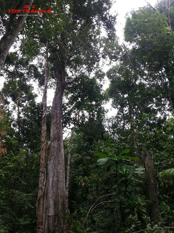 Du Lịch Campuchia khám phá đảo Koh Rong