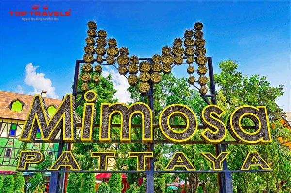 Thành phố tình yêu Mimosa ở Thái Lan