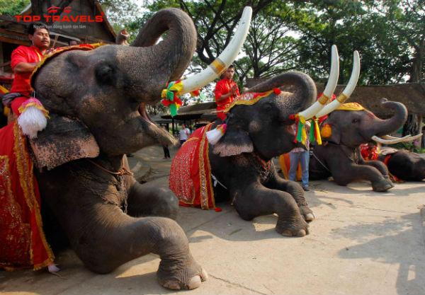 Tour Du Lịch Thái Lan Tháng 5