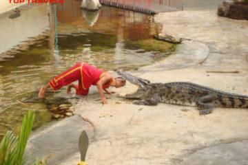 Trại cá sấu Samutprakarn tại Thái Lan Trại cá sấu Samutprakarn tại Thái Lan