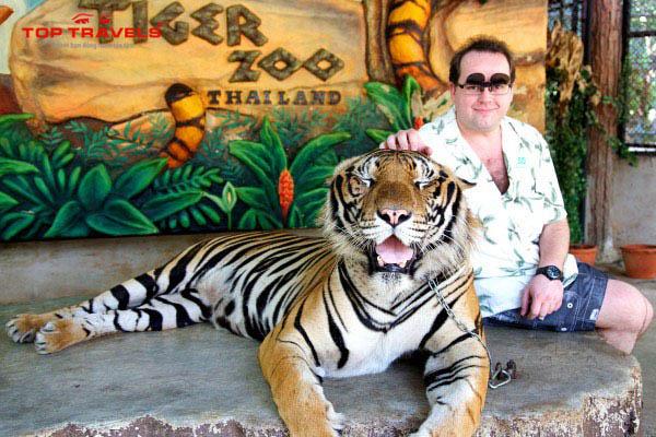 Vườn Thú Sriracha Tiger Zoo Ở Thái Lan