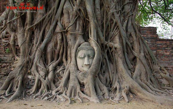 Wat Mahathat Ở Thái Lan
