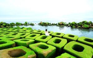 Tour Phú Yên 3 ngày 2 đêm Top Travels