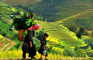 Tour Sapa 3 ngay 3 dem top travels