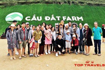Tour Đà Lạt Top Travels