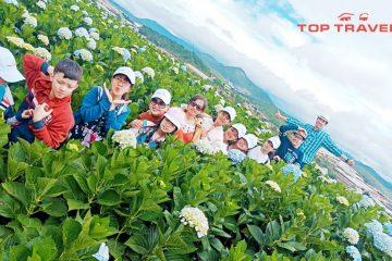 tour-da-lat-thang-6-gia-re-top-travels